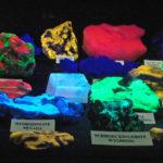 short wave ultraviolet light blacklight UV flashlight