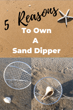Sand Dipper beach scoop for collecting rocks on the beach