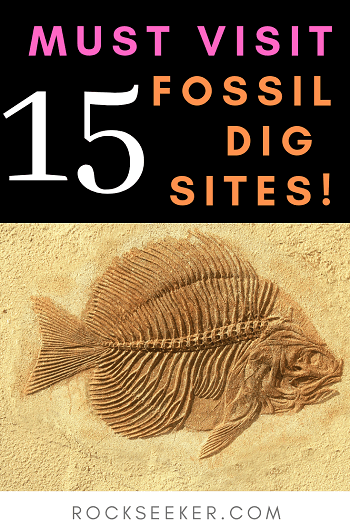 15 fossil dig sites