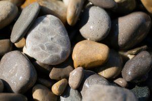 charlevoix stone vs petoskey stone