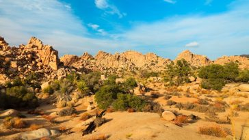 where to go rockhounding in southern california