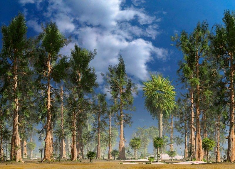 Mesozoic Era Forest